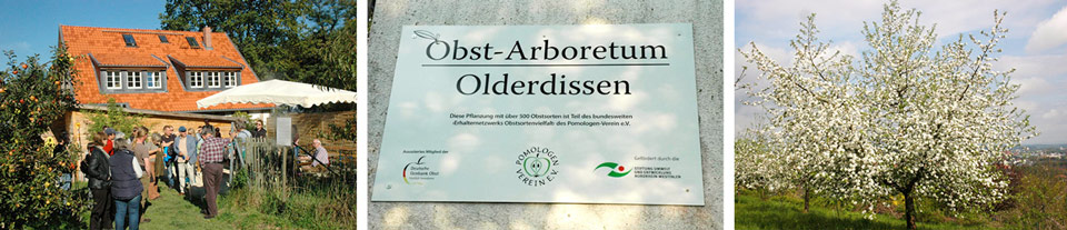 obst-aboretum-1